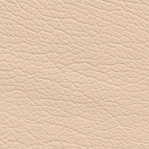 Leather Buffalo colour Cream