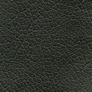 Leather Buffalo colour Green