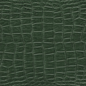 Leather Crocodile colour Green